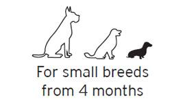 Snacks para perros de tamaño pequeño. Dog snacks for small breeds.