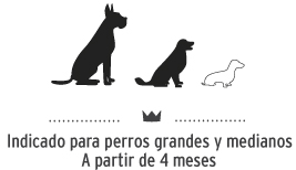 Snacks para perros de tamaño mediano y grande. Dog snacks for medium and big breeds.