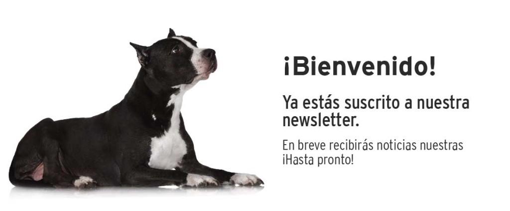 Confirmación de suscripción newsletter Mediterranean Natural.