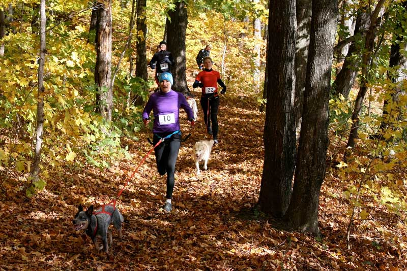 Canicross deporte con perros