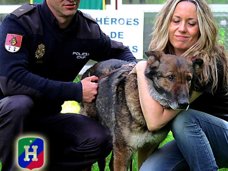Héroes de 4 Patas, la ONG que promueve la adopción de perros jubilados de las Unidades Caninas de los Cuerpos de Seguridad.