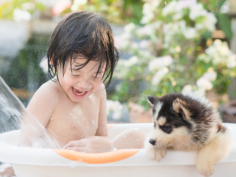 8 razones por las que un niño debe tener un perro