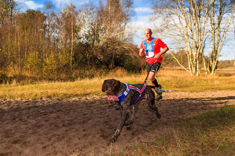 Canicross: deporte con perro