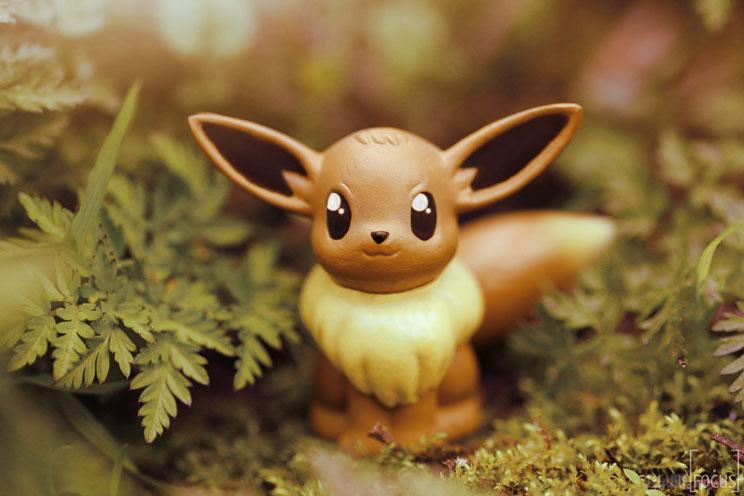 perros-en-adopcion-eevee-no-es-un-pokemon-4
