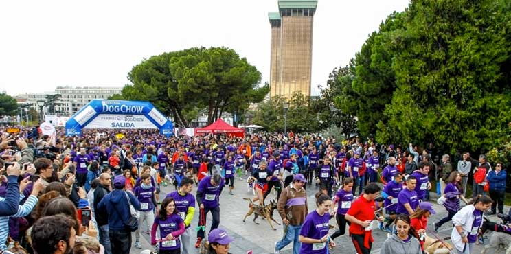 perroton-madrid-2016-la-carrera-por-la-adopcion-de-animales-2