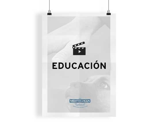 CATEGORIA_EDUCACION_SIN