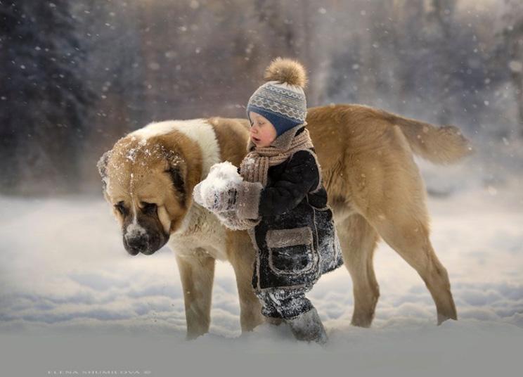 Elena Shumilova: fotografías invernales que te transportan a un mundo mágico