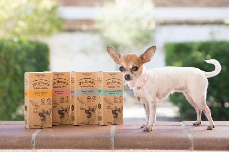 Guía completa de las razas de perros: Chihuahua