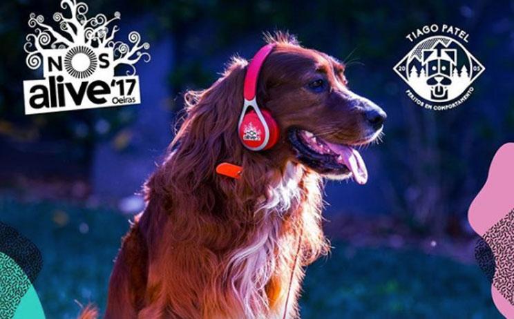 Los perros son bienvenidos en los festivales de música