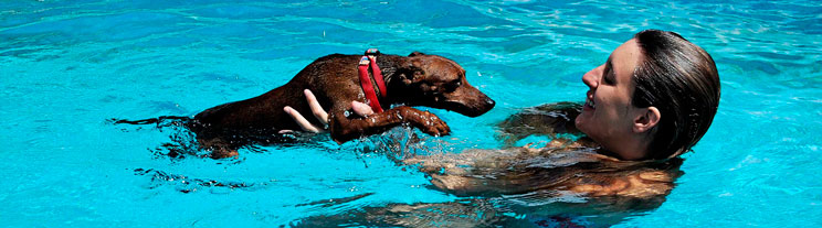 Agenda-dogfriendly-6-actividades-para-disfrutar-este-mes-de-agosto-6