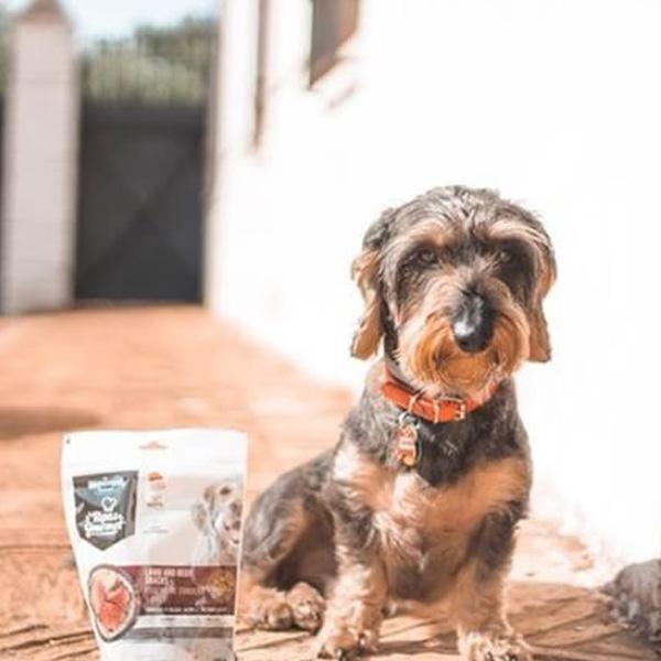 Con Perros y a Lo Loco y Tapas Gourmet para perros de Mediterranean Natural