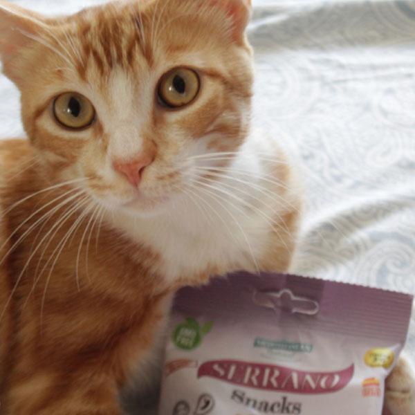 Cuatro Patas Web y Serrano Snacks para gatos de Mediterranean Natural