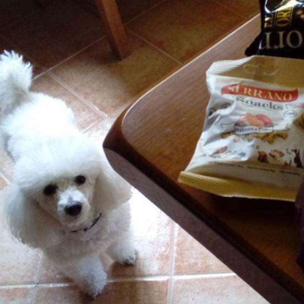 Redes sociales: Olallamar y Serrano Snacks
