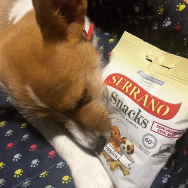 Redes sociales: Daye ayl y Serrano Snacks
