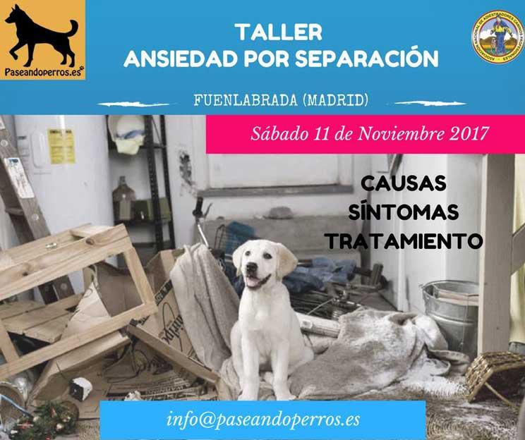 Agenda-dogfriendly-actividades-con-perro-en-noviembre-7