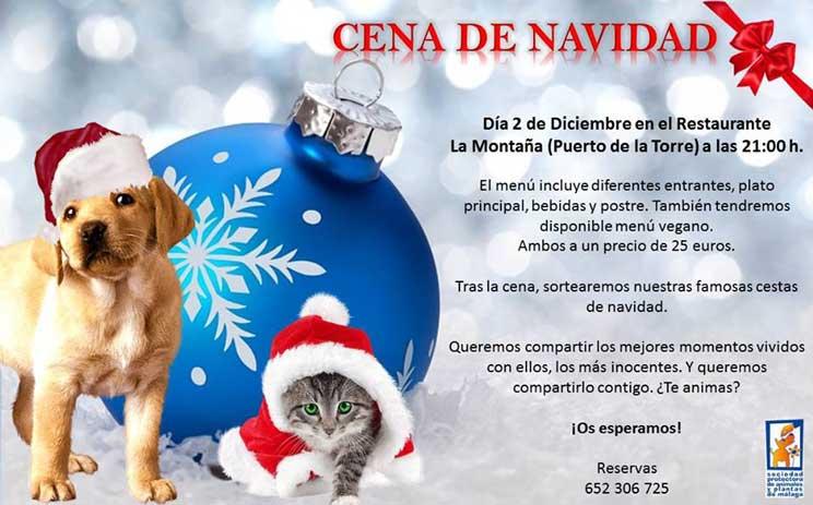 Agenda-dogfriendly-actividades-con-perro-en-diciembre-4