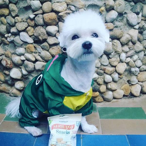 Snowwhite Maltés y Serrano Snacks de Mediterranean Natural para perros