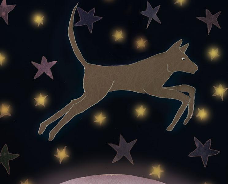 Leyenda cherokee: El perro y la Vía Láctea