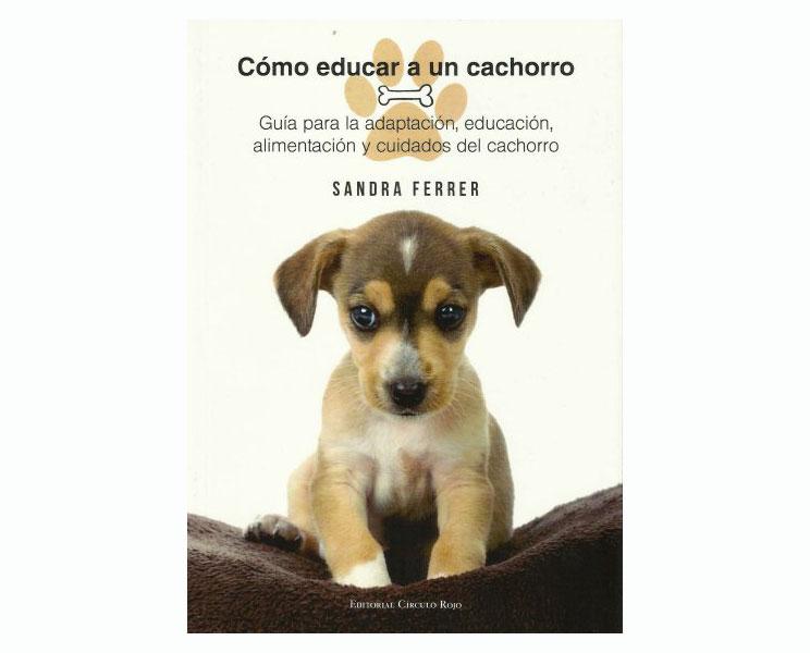 10-libros-recomendados-para-los-que-amamos-a-los-perros-3