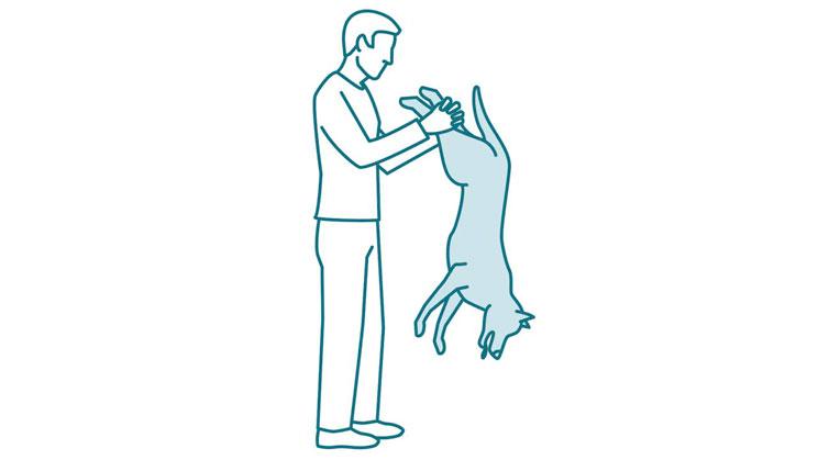 Que-hacer-si-mi-perro-se-atraganta-y-no-respira-maniobra-Heimlich-1