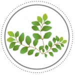 Snacks para perros con antioxidantes naturales (aceite de orégano) Mediterranean Natural