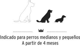 Snacks para perros de tamaño mediano y pequeño.Dog snacks for small and medium breeds.
