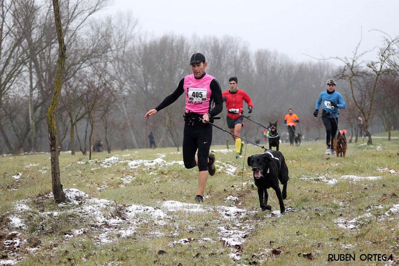 canicross-deporte-con-perro-2