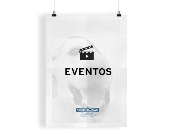 CATEGORIAS_EVENTOS_SIN