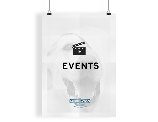 CATEGORIA_EVENTS