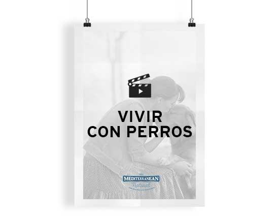CATEGORIA_VIVIR-CON-PERROS_SIN