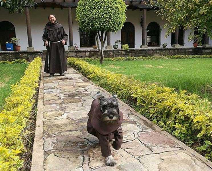 Fray Bigotón: de perro callejero a monje franciscano