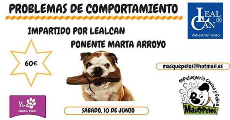 Agenda Dogfriendly: 12 actividades con perro en junio de 2017