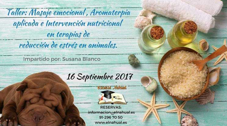 Agenda dogfriendly: 6 actividades con perro en septiembre