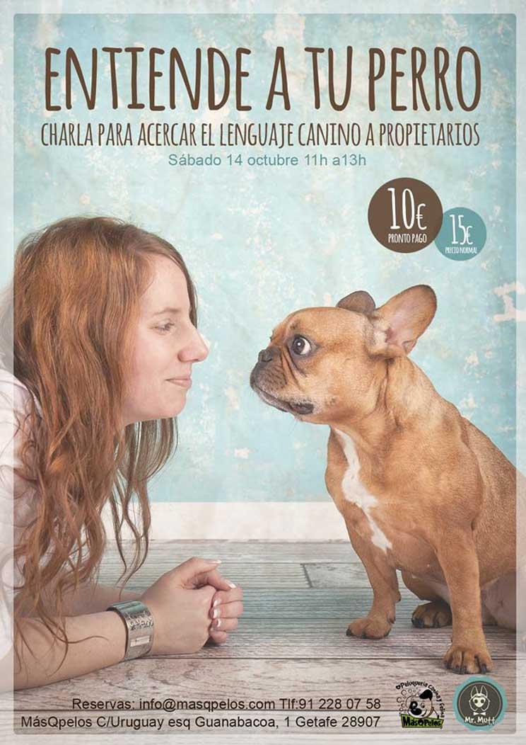 Agenda Dogfriendly: 10 actividades con perro y sobre perros en octubre