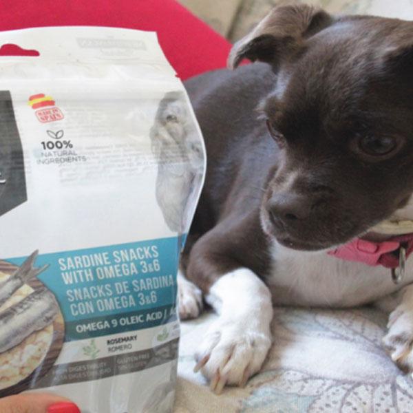 Cuatro Patas Web y Tapas Gourmet de Mediterranean Natural para perros