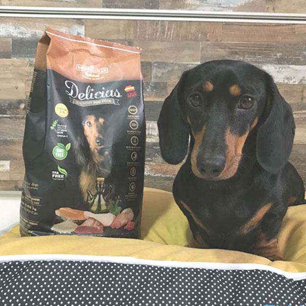 Elma Ladra Blog y Delicias de Mediterranean Natural para perros
