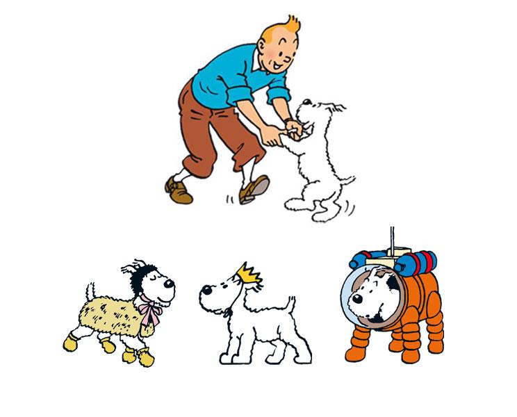 Guia-completa-de-las-razas-de-perros-fox-terrier-6