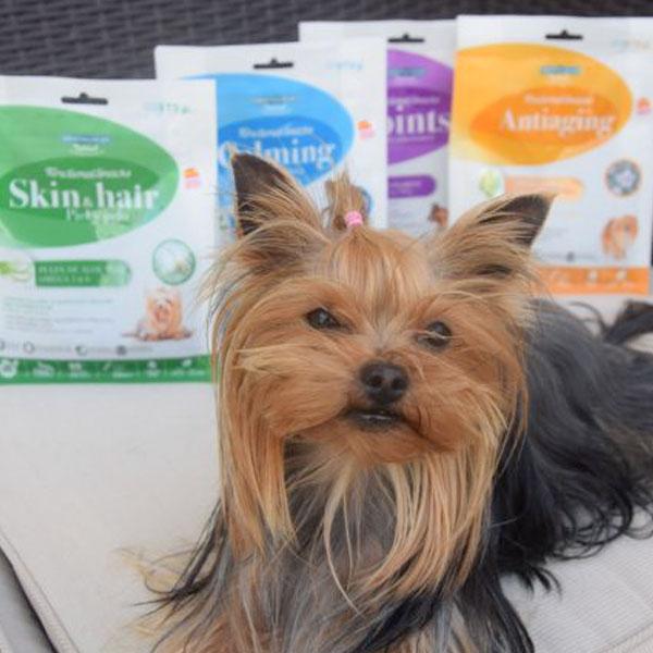 Karim Yorkie y Functional Snacks para perros de Mediterranean Natural