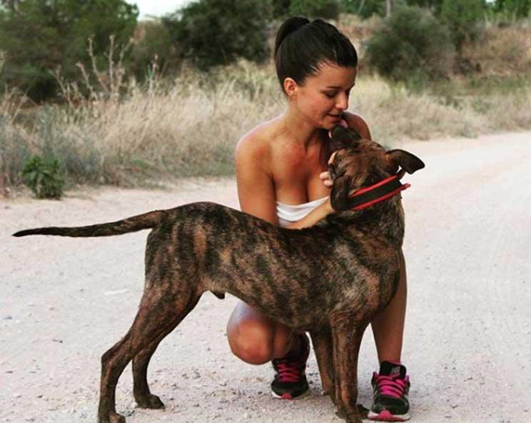 Perros en adopción: Bobby is different