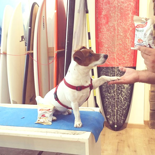 Redes sociales: Marys Pet Hotel y Serrano Snacks