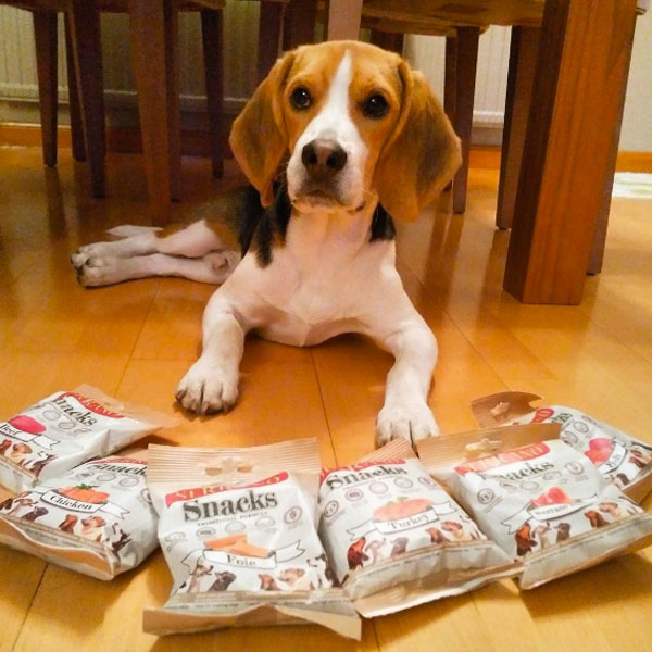 Redes sociales: Curry The Beagle y Serrano Snacks