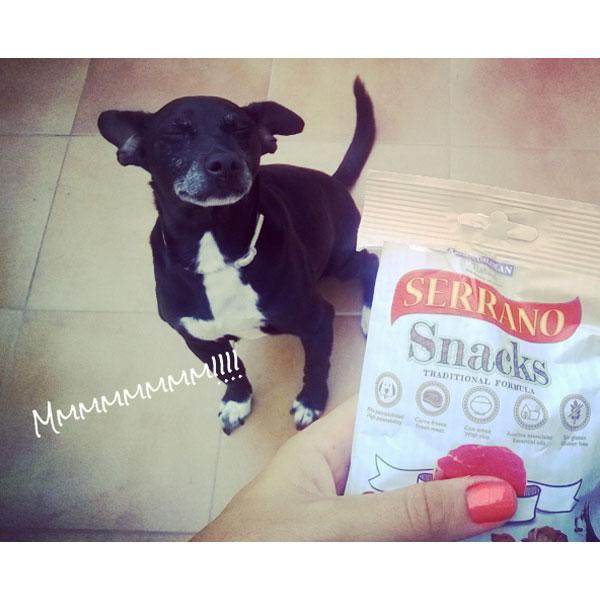 Redes sociales: Perros con Historia y Serrano Snacks