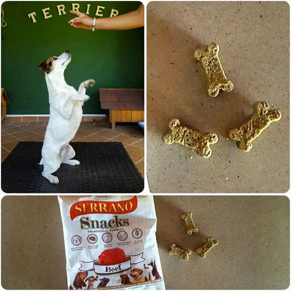 Redes sociales: Puro Terrier y Serrano Snacks