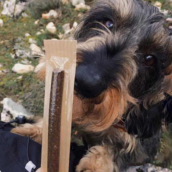 Con Perros y a lo Loco y La Barrita Mediterranean Natural