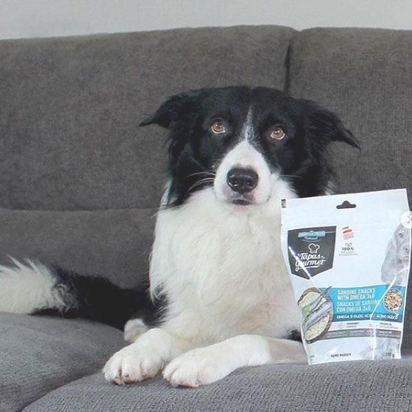 Fil y Tapas Gourmet para perros de Mediterranean Natural