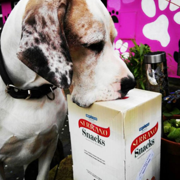 Obi great dane y Serrano Snacks de Mediterranean Natural