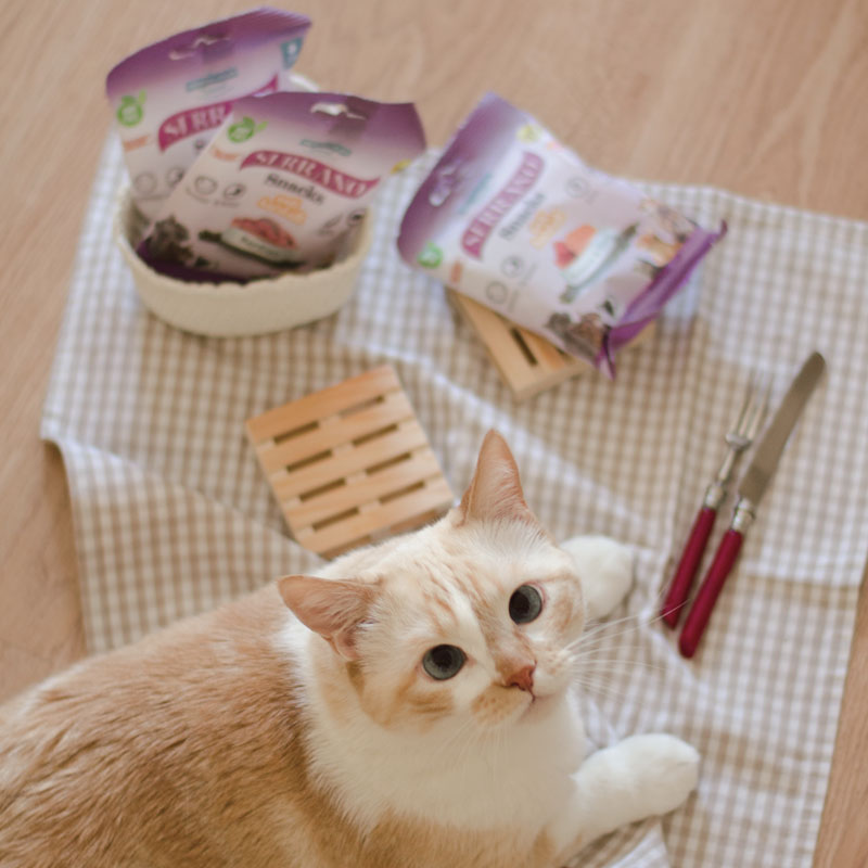 Somos Cat Lovers y Serrano Snacks de Mediterranean Natural