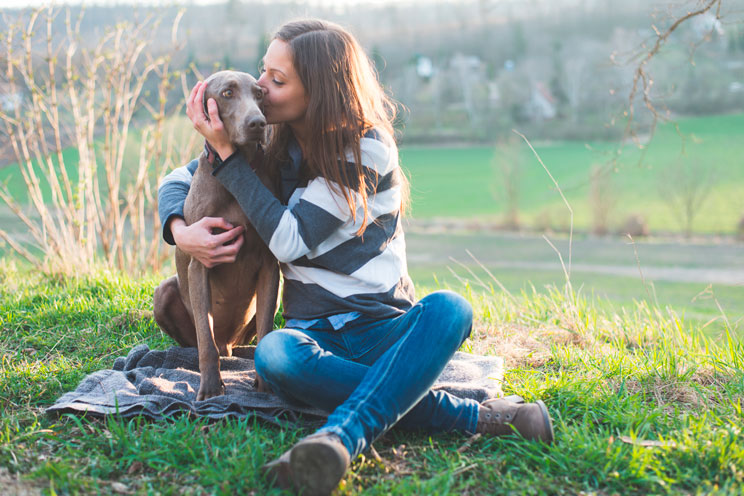 Cuáles son y cómo cubrir las necesidades de tu perro