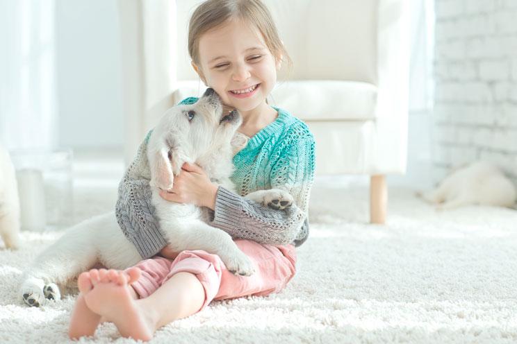 Antes de regalar un animal valora estos 5 aspectos