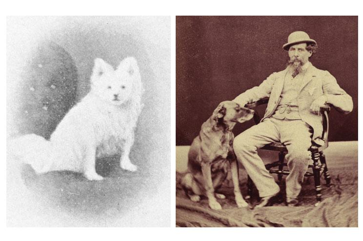 Charles-Dickens-sus-perros-y-su-presencia-en-sus-obras-4